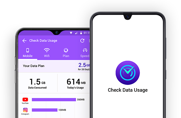 internet data usage monitor
