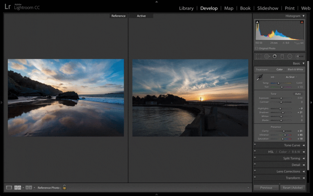 Top 7 Picasa Alternatives To Manage Your Photos In 2020