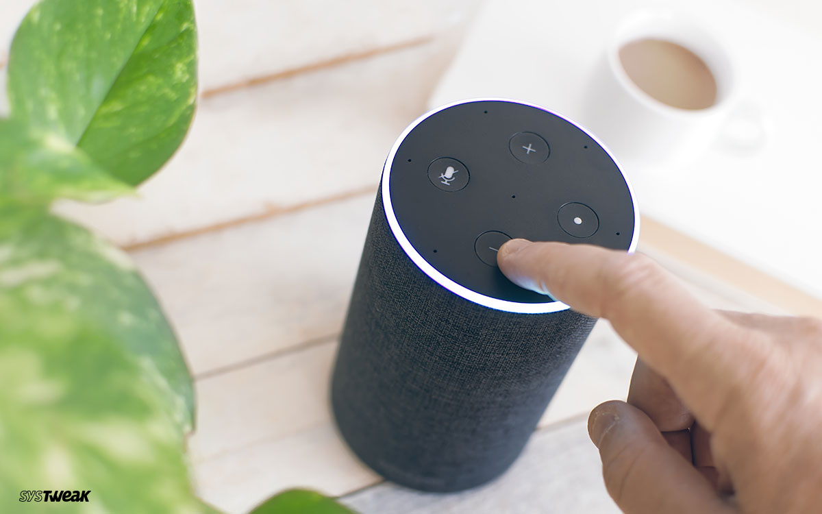 Top Alexa Skills That Glorify Amazon's Digital Brain Capabilities