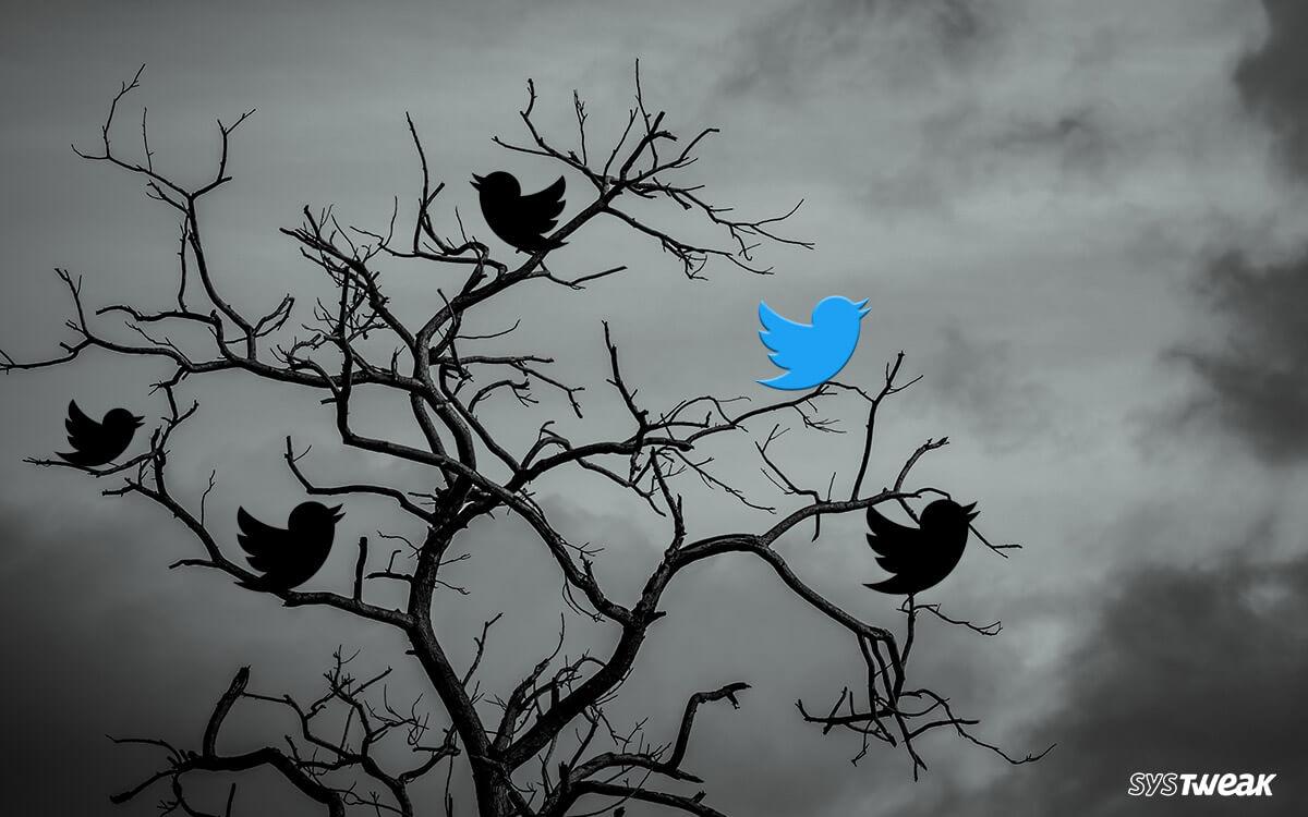 Best Twitter Alternatives Like Mastodon
