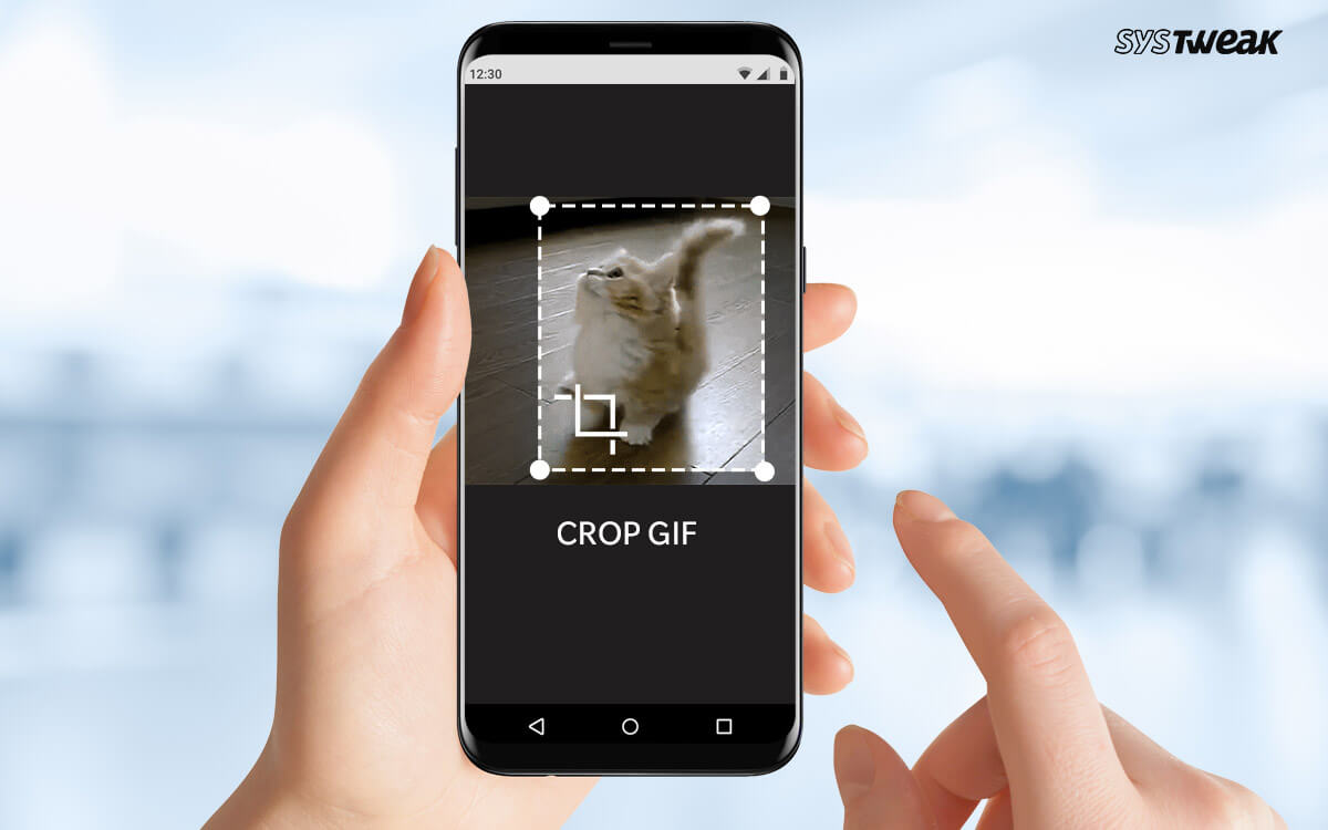 How To Resize & Crop GIFs Without Losing Animation